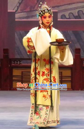 Chinese Ping Opera Diva Liu Lanzhi Apparels Costumes and Headpieces Southeast Fly the Peacocks Traditional Pingju Opera Young Female Dress Garment