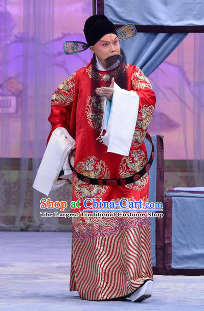 Han Yuniang Chinese Peking Opera Laosheng Garment Costumes and Headwear Beijing Opera Elderly Male Apparels Clothing Official Cheng Pengjv Embroidered Robe