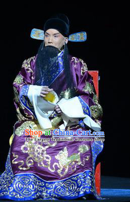 On A Wall and Horse Chinese Peking Opera Elderly Man Garment Costumes and Headwear Beijing Opera Old Gentleman Apparels Minister Pei Xingjian Clothing