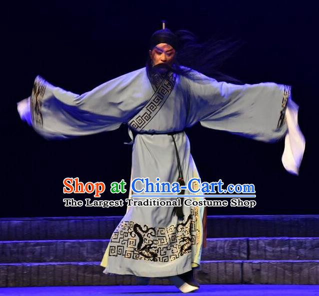 Qing Tian Dao Chinese Peking Opera Elderly Male Hai Rui Garment Costumes and Headwear Beijing Opera Laosheng Apparels Clothing
