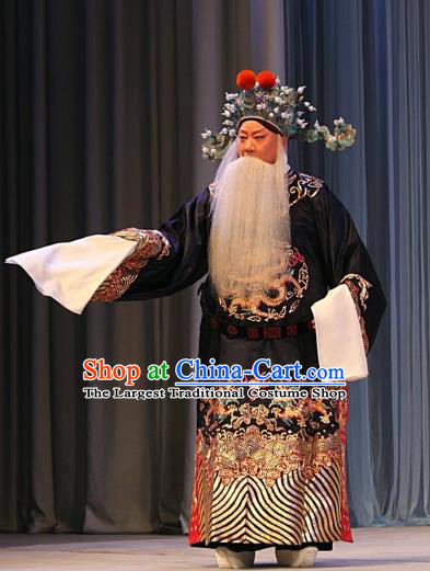 Ba Zhen Tang Chinese Peking Opera Old Official Zhang Wenda Garment Costumes and Headwear Beijing Opera Elderly Male Apparels Clothing