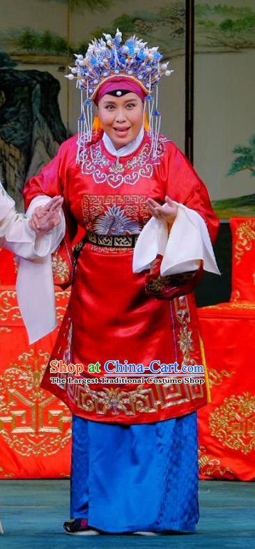 Chinese Beijing Opera Vieille Dame Apparels Ba Zhen Tang Costumes and Headpieces Traditional Peking Opera Countess Dress Elderly Female Red Garment