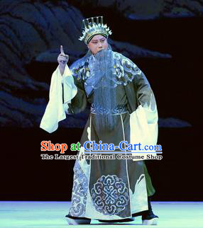 Su Qin Chinese Peking Opera Laosheng Political Strategists Garment Costumes and Headwear Beijing Opera Elderly Male Apparels Clothing