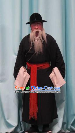 Qin Xianglian Chinese Ping Opera Old Man Garment Costumes and Headwear Pingju Opera Elderly Male Zhang Yuanling Apparels Clothing