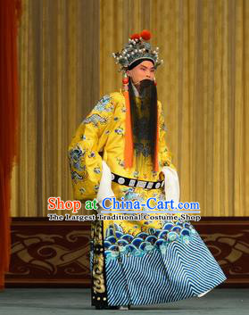 Xiao Yao Jin Chinese Peking Opera Xian Emperor Liu Xie Garment Costumes and Headwear Beijing Opera Elderly Male Apparels Clothing
