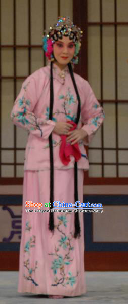 Chinese Beijing Opera Liu Lanzhi Young Girl Apparels Costumes and Headpieces Traditional Peking Opera Xiaodan Pink Dress Garment