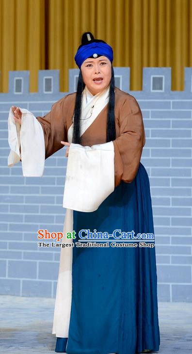 Chinese Beijing Opera Old Woman Apparels You Liu Dian Costumes and Headpieces Traditional Peking Opera Elderly Female Dress Garment