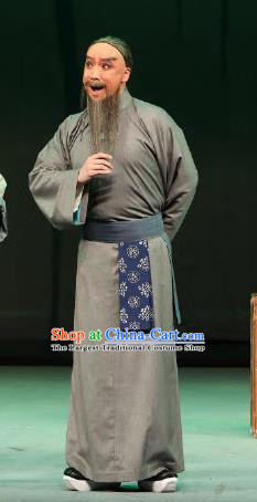 Inspector And Prince Chinese Peking Opera Civilian Male Garment Costumes and Headwear Beijing Opera Elderly Scholar Apparels Clothing