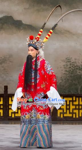 Daming Prefecture Chinese Peking Opera Old Man Garment Costumes and Headwear Beijing Opera Laosheng Apparels Elderly Male Clothing