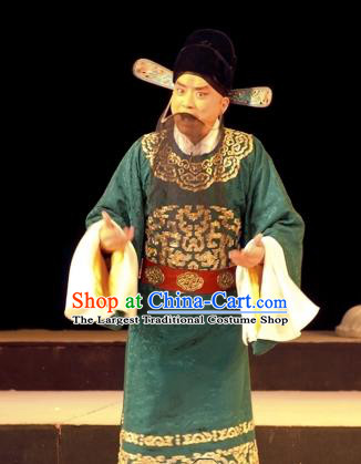 Wu Zetian Chinese Peking Opera Scholar Luo Binwang Garment Costumes and Headwear Beijing Opera Elderly Male Apparels Laosheng Clothing