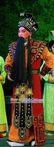 King Zhao Wuling Chinese Peking Opera Official Garment Costumes and Headwear Beijing Opera Elderly Male Apparels Chancellor Fei Yi Clothing