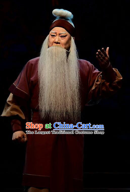 Qi Nv Wu Rong Chinese Peking Opera Laosheng Garment Costumes and Headwear Beijing Opera Elderly Male Apparels Clothing