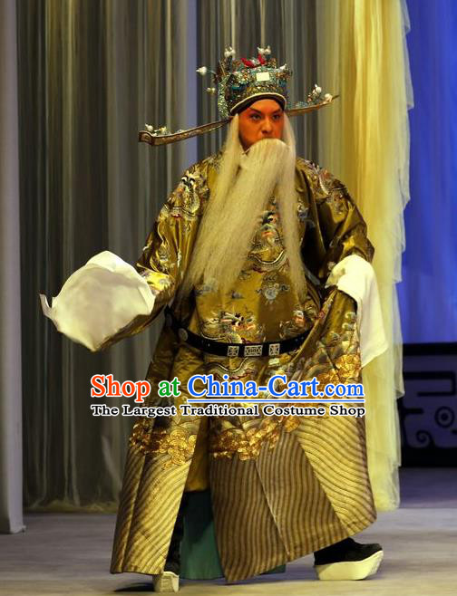 Zhan Hong Zhou Chinese Peking Opera Laosheng Garment Costumes and Headwear Beijing Opera Elderly Male Apparels Official Yang Yanzhao Clothing
