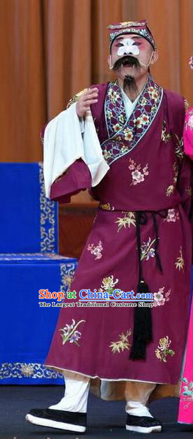 Li Sanniang Chinese Peking Opera Chou Apparels Costumes and Headpieces Beijing Opera Elder Brother Garment Clown Clothing