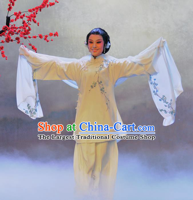 Chinese Beijing Opera Garment Luo Mei Yin Costumes and Hair Accessories Traditional Peking Opera Young Female Dress Diva Mei Fen Apparels