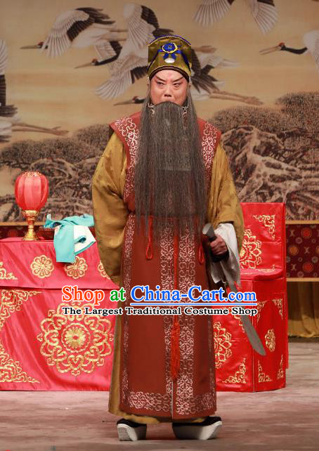 Ye Zhu Lin Chinese Peking Opera Laosheng Apparels Costumes and Headpieces Beijing Opera Elderly Male Song Jiang Garment Clothing