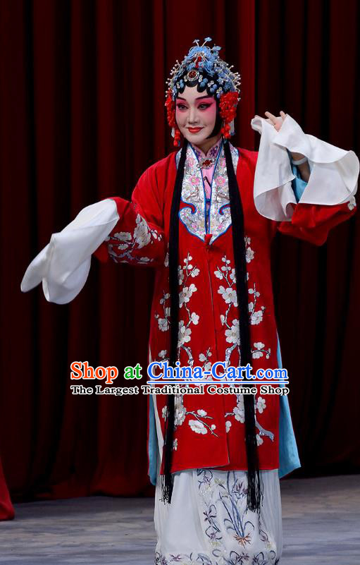 Chinese Beijing Opera Bride Dou E Garment Snow in June Costumes and Hair Accessories Traditional Peking Opera Actress Red Dress Hua Tan Apparels