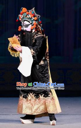 Hua Long Dian Jing Chinese Peking Opera Military Officer Apparels Costumes and Headpieces Beijing Opera General Chang He Garment Clothing