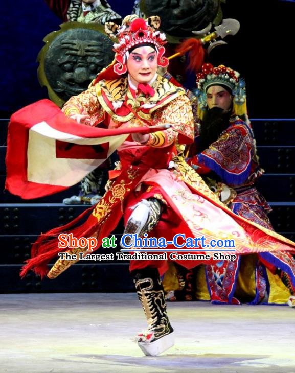 The Tiger Generals Chinese Peking Opera General Li Cunxiao Apparels Costumes and Headpieces Beijing Opera Martial Male Garment Wusheng Clothing