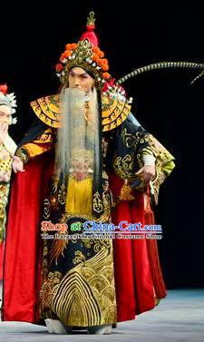 The Tiger Generals Chinese Peking Opera Lord Li Keyong Apparels Costumes and Headpieces Beijing Opera Elderly Male Garment King Clothing