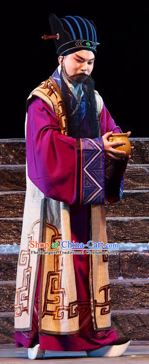 King of Qi Tian Heng Chinese Peking Opera Laosheng Apparels Costumes and Headpieces Beijing Opera Old Man Garment Swordsman Clothing