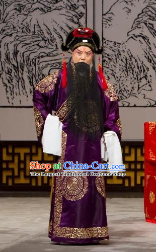 Long Tan Bao Luo Chinese Peking Opera Martial Man Bao Hongxun Apparels Costumes and Headpieces Beijing Opera Takefu Garment Clothing
