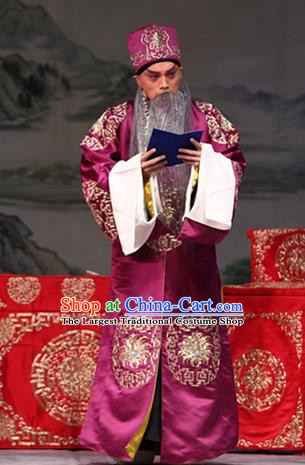 Zhuo Wenjun Chinese Peking Opera Laosheng Apparels Costumes and Headpieces Beijing Opera Elderly Male Garment Landlord Zhuo Wangsun Clothing