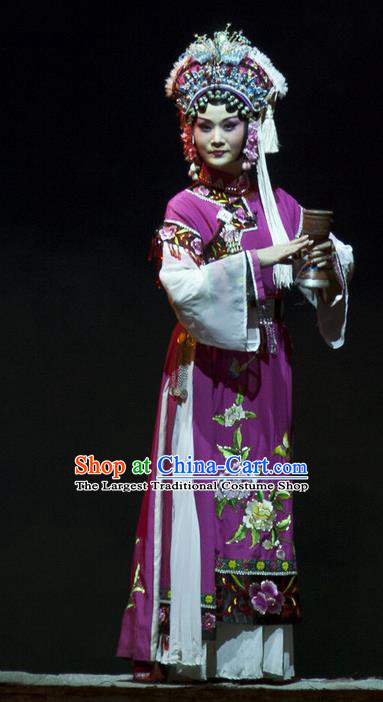 Chinese Beijing Opera Queen Garment Consort Bai Jie Costumes and Hair Accessories Traditional Peking Opera Diva Dress Hua Tan Purple Apparels