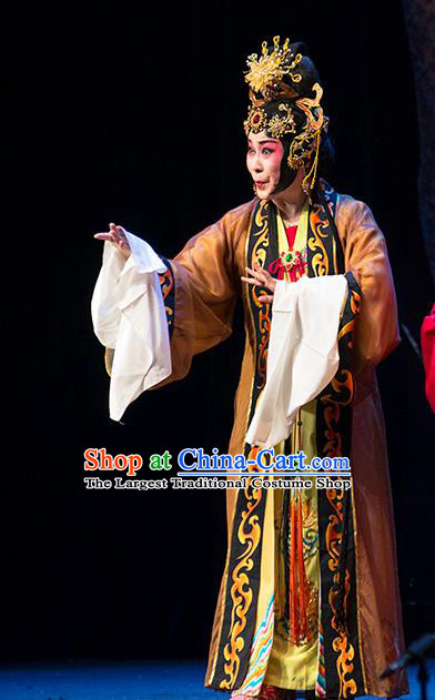 Chinese Sichuan Opera Rich Dame Costumes and Hair Accessories Hui Lan Ji Traditional Peking Opera Diva Dress Dowager Apparels
