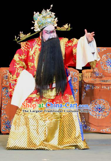 Fen Xiang Ji Chinese Sichuan Opera Official Apparels Costumes and Headpieces Peking Opera Laosheng Garment Elderly Male Python Embroidered Robe Clothing