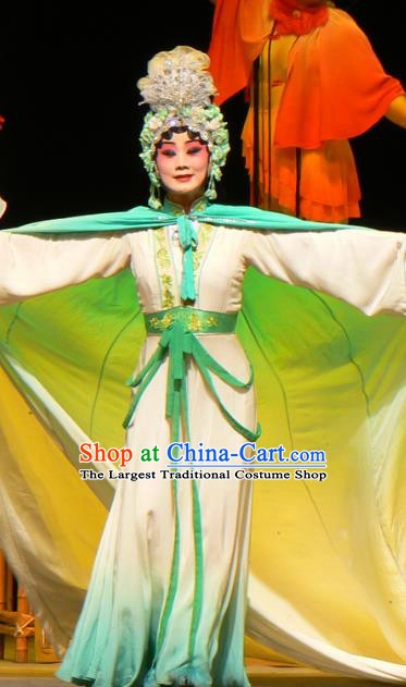 Chinese Sichuan Opera Ghost Red Plum Li Huiniang Garment Costumes and Hair Accessories Traditional Peking Opera Actress Dress Hua Tan Apparels