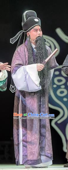 Bao En Ji Chinese Sichuan Opera Laosheng Apparels Costumes and Headpieces Peking Opera Elderly Male Garment Official Wen Datong Clothing