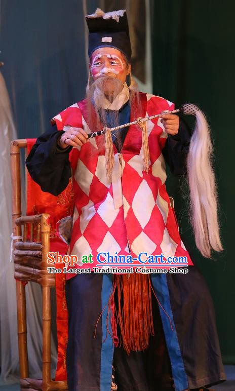 The Lotus Lantern Chinese Sichuan Opera Elderly Male Apparels Costumes and Headpieces Peking Opera Taoist Priest Garment Clothing