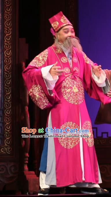He Zhu Pei Chinese Sichuan Opera Ministry Councillor Apparels Costumes and Headpieces Peking Opera Elderly Male Garment Landlord Jin Sanguan Clothing