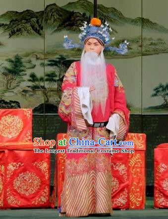 Yu Bei Pavilion Chinese Peking Opera Old Minister Garment Costumes and Headwear Beijing Opera Laosheng Apparels Elderly Official Clothing