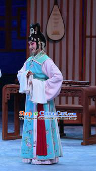 Chinese Beijing Opera Xiaodan Actress Apparels Costumes and Headpieces Traditional Peking Opera Young Lady Dress Garment