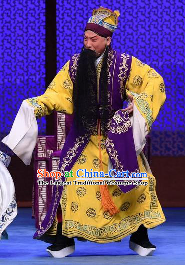 Luo Cheng Chinese Peking Opera Laosheng Garment Costumes and Headwear Beijing Opera Elderly Male Apparels Emperor Li Yuan Clothing