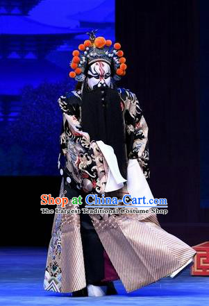 Chinese Peking Opera General Luo Cheng Garment Costumes and Headwear Beijing Opera Elderly Male Apparels Clothing Python Embroidered Robe