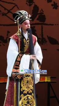 Xin Zhui Chinese Peking Opera Laosheng Li Cang Garment Costumes and Headwear Beijing Opera Elderly Male Apparels Clothing