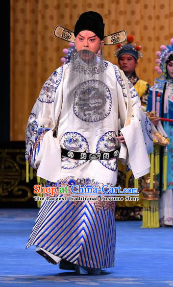 Da Bao Guo Er Jin Gong Chinese Peking Opera Official Yang Bo Garment Costumes and Headwear Beijing Opera Laosheng Minister Apparels Clothing