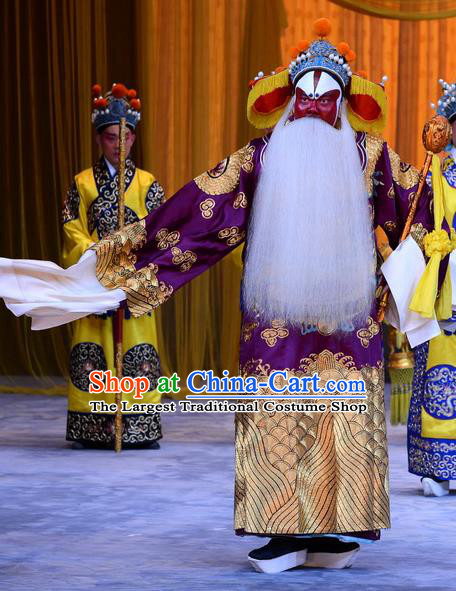 Da Bao Guo Er Jin Gong Chinese Peking Opera Laosheng Garment Costumes and Headwear Beijing Opera Elderly Male Yang Bo Apparels Clothing