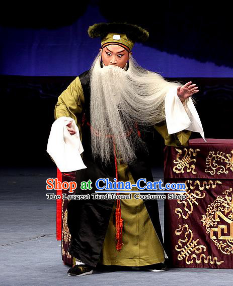 Sacrifice Zhao Shi Gu Er Chinese Peking Opera Gongsun Chujiu Garment Costumes and Headwear Beijing Opera Laosheng Apparels Clothing