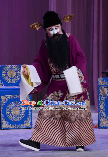 Chu Palace Hen Chinese Peking Opera Laosheng Garment Costumes and Headwear Beijing Opera Treacherous Official Fei Wuji Apparels Clothing