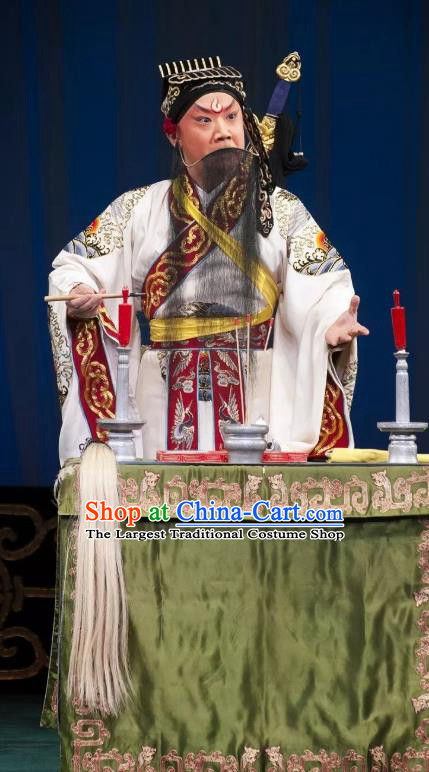 Qing Shi Mountain Chinese Peking Opera Laosheng Elderly Male Garment Costumes and Headwear Beijing Opera Taoist Lv Dongbin Apparels Clothing