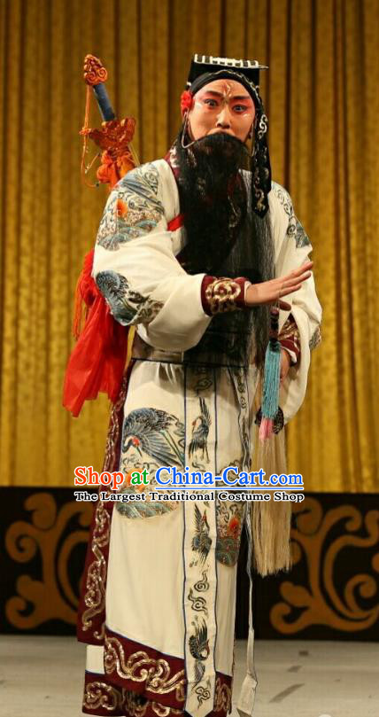 Qing Shi Mountain Chinese Peking Opera Immortal Garment Costumes and Headwear Beijing Opera Taoist Lv Dongbin Apparels Elderly Male Clothing