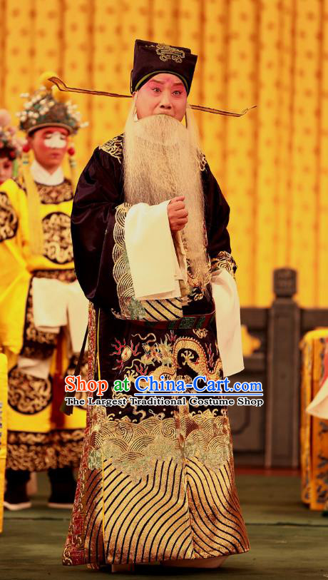 A Honey Trap Chinese Peking Opera Laosheng Garment Costumes and Headwear Beijing Opera Official Apparels Elderly Male Clothing