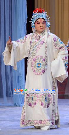 Number One Scholar Matchmaker Chinese Peking Opera Takefu Garment Costumes and Headwear Beijing Opera Wusheng Apparels Martial Male Yang Yanzhao Clothing
