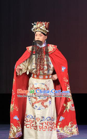 Luo Yang Gong Chinese Peking Opera Monarch Garment Costumes and Headwear Beijing Opera Emperor Li Shimin Apparels Clothing