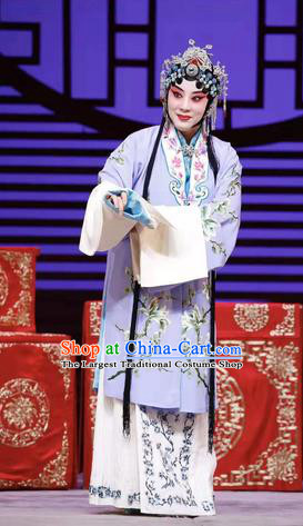 Chinese Beijing Opera Hua Tan Apparels Costumes and Headdress Han Ming Fei Traditional Peking Opera Actress Wang Zhaojun Young Female Dress Garment