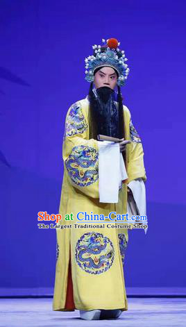 Han Ming Fei Chinese Peking Opera Emperor Yuan Garment Costumes and Headwear Beijing Opera Laosheng Apparels King Elderly Male Clothing